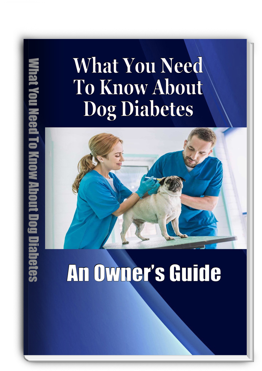 Diabetes and Your Dog